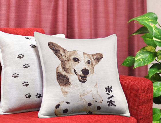 dog's cushion
